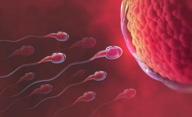 Ba nguyên nhân phổ biến gây vô sinh nam